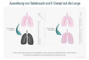 Infografik Vergleich der Wirkung von Rauch und Dampf auf Lungengewebe